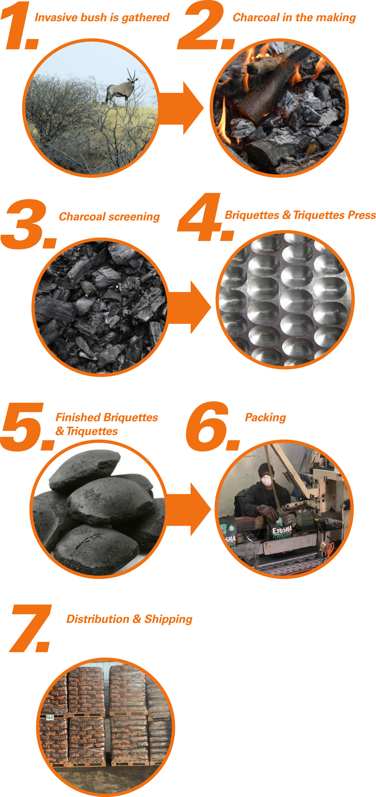 The 7 steps involved in manufacturing our charcoal
